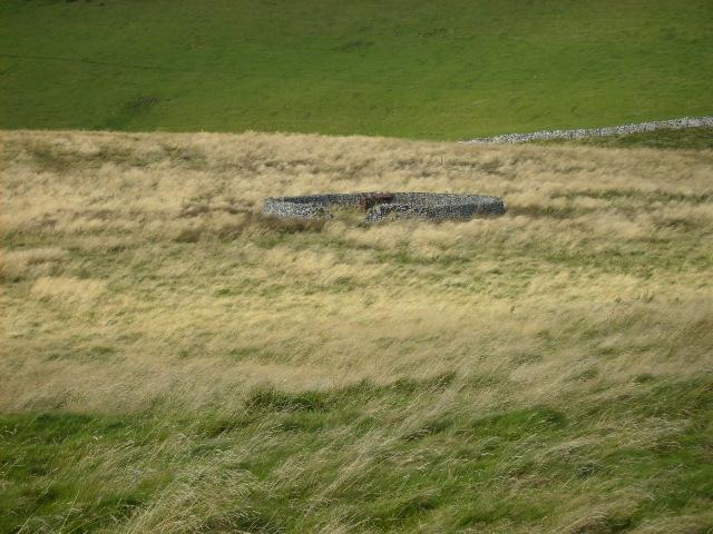 Sheepfold 1 Km west of Elsdonburn Shank