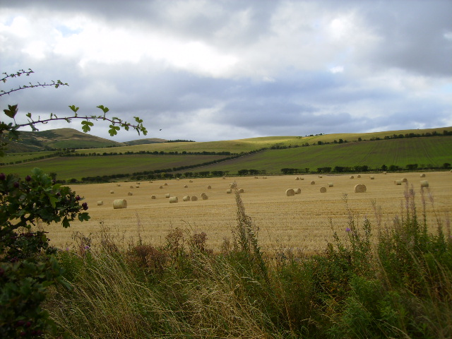 View over field towards Kilham Hill