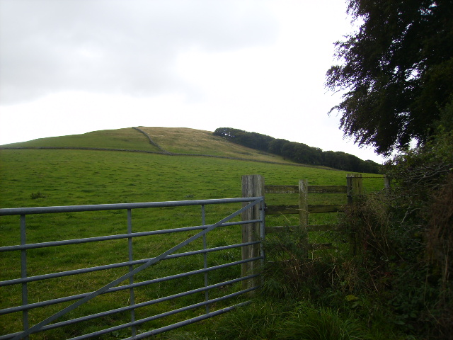 View uphill towards The Bell