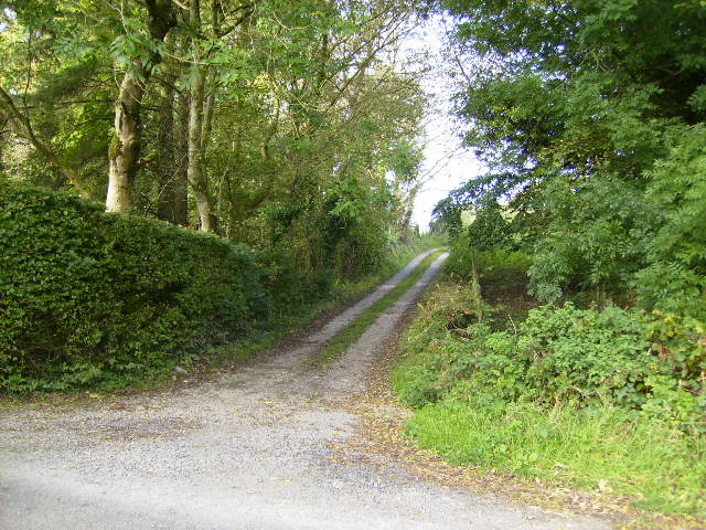 Track leading to Langlands