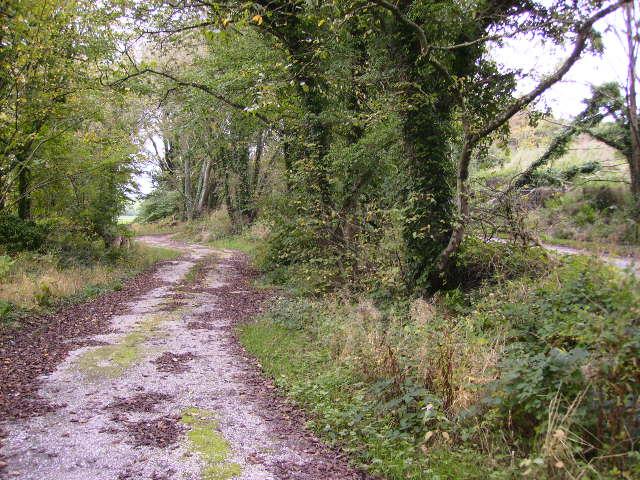 Track alongside public road