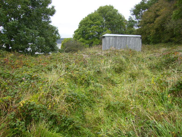 Corrugated iron shed sited near Parkgate
