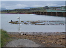 SD0894 : A high tide at Eskmeals viaduct by Andrew Hill