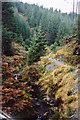 SN8388 : River Severn in Hafren Forest by Graham Horn