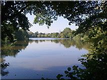 TQ5794 : The Lake, South Weald Park by John Winfield