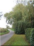 TM0663 : Lane through Brown Street - not a metropolis! by Andrew Hill