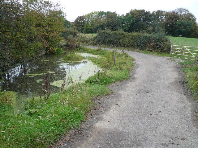 Frith Hall Farm - Duckpond