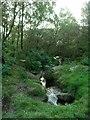 SK2576 : Stream, Froggatt Edge by Lynne Kirton