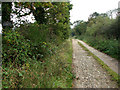 TG4025 : Private road to Calthorpe Broad by Evelyn Simak