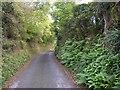 SN0905 : Lane in East Williamston by Humphrey Bolton