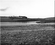 SW6424 : Loe Pool, Cornwall (2) by Dr Neil Clifton