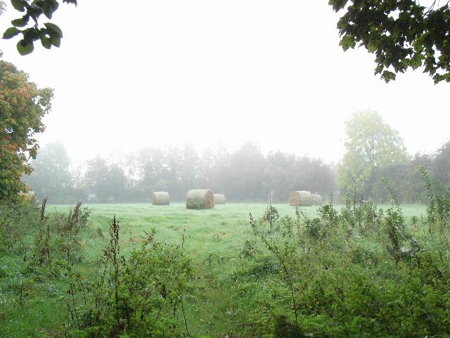 Small Field Near Curraghtown & Gainstown, Co. Meath