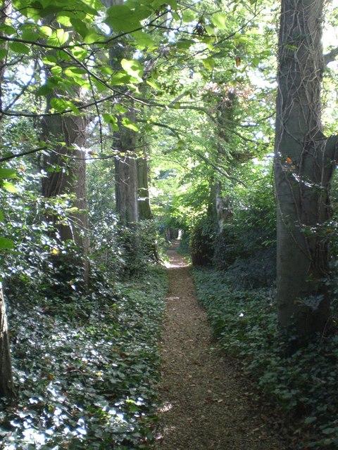 St Andrew's Walk