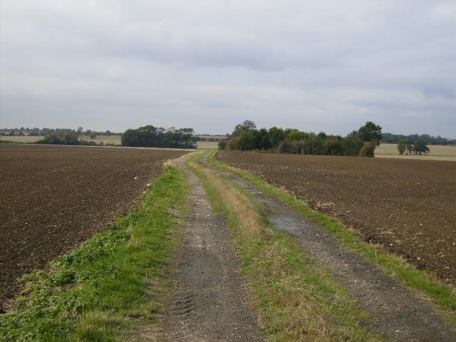 Farm track 2 Km west of Red House Farm