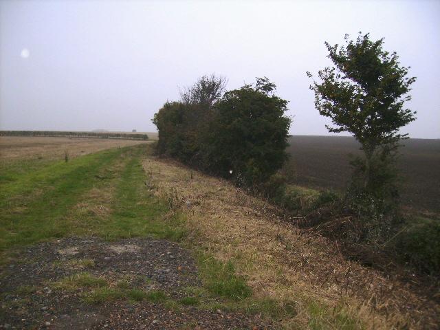 Track and field margin near Colesden