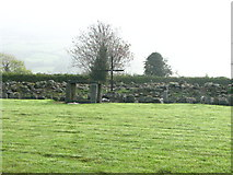 S7653 : Templemoling Cemetery by liam murphy