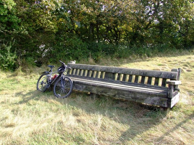 'Giant Bench'