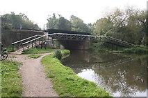 TQ0562 : Roving bridge over the River Wey by Dr Neil Clifton