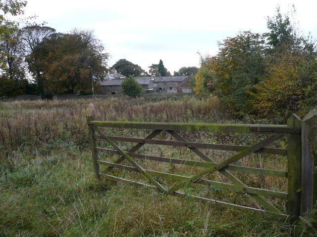 Walton Back Lane - View