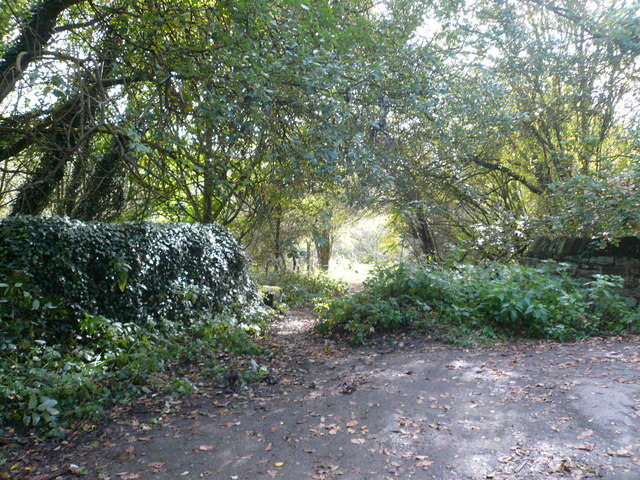 Harewood Road - Overgrown Footpath Entrance