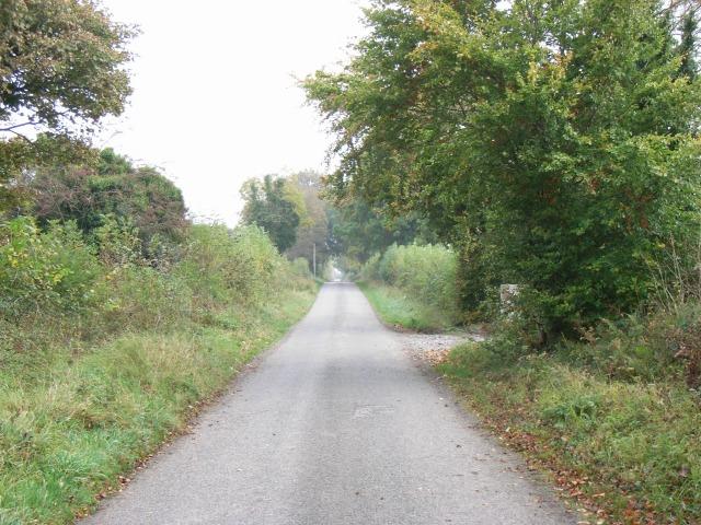 Back Road, Ongenstown, Co. Meath