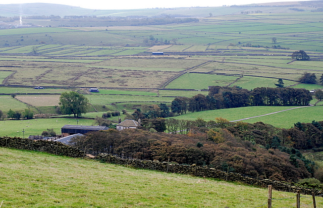 Shepherds Flat Farm