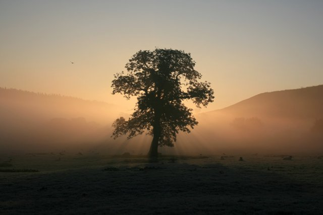 Sunrise, Lonsdale