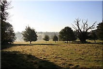 TL8063 : North end of Ickworth Park by Bob Jones