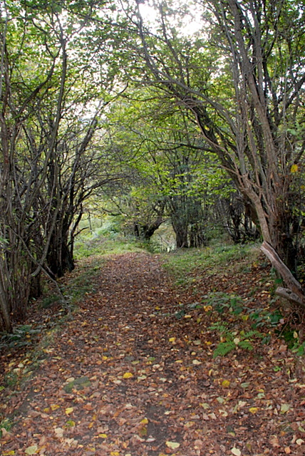 The path down to Stoke Ford