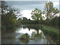 SJ9230 : Gloom on the Trent and Mersey Canal, near Aston, Staffordshire by Roger  Kidd