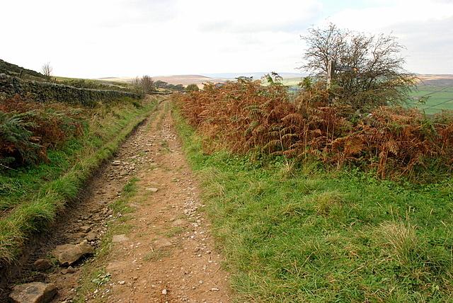Unmade lane across Bretton Moor