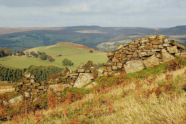 Dry stone wall on the track down to Bretton Clough