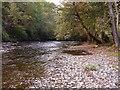 SJ1012 : River Vyrnwy, Pontrobert by Penny Mayes