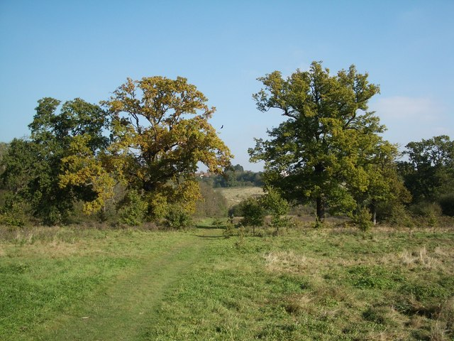 Footpath near Mill Hill, late October