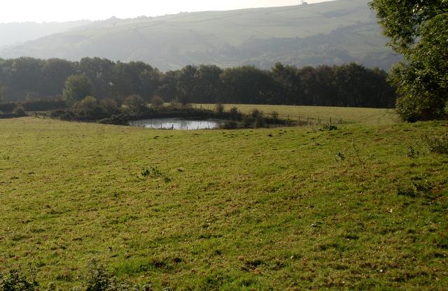 Small reservoir above Middleton Plantation