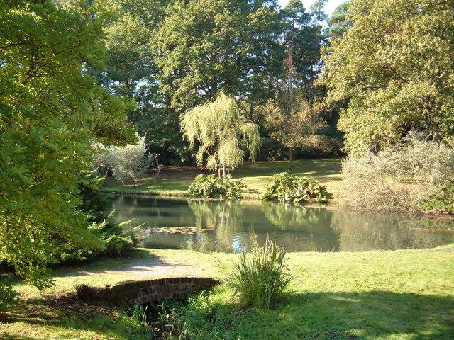 Jubilee Pond, Exbury by Margaret Sutton