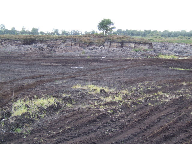 Peat bog near Derries, Co Offaly