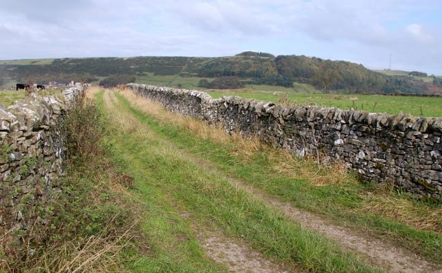 Farm track off Tideswell Lane