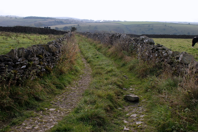 A farm track running south from Tideswell Lane