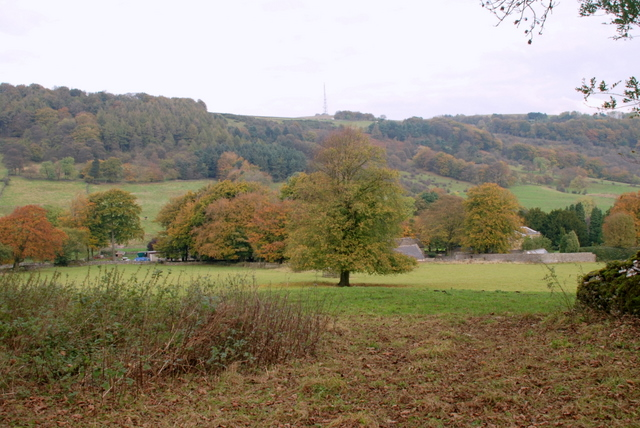 Towards Eyam View Farm