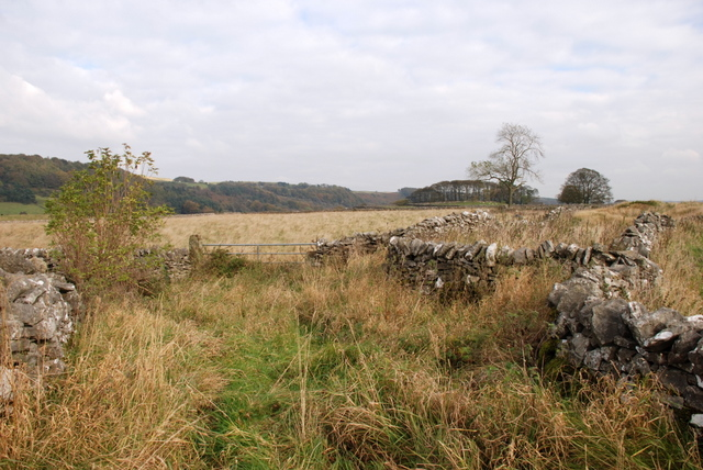 Dry stone walls above Foolow