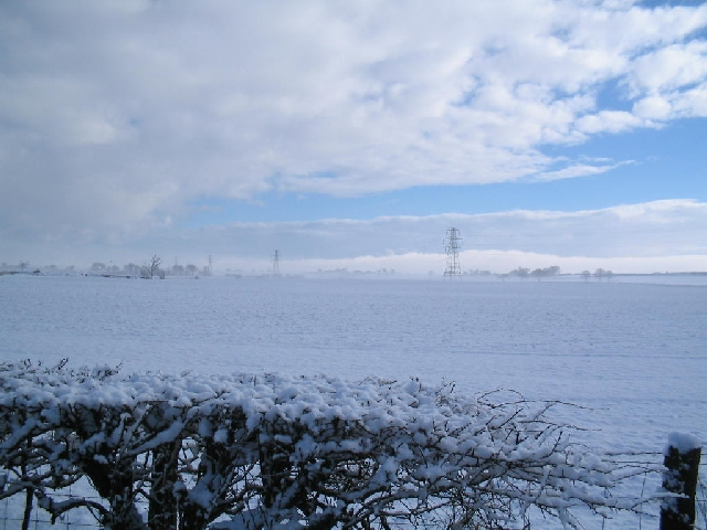 Power Cables in the snow
