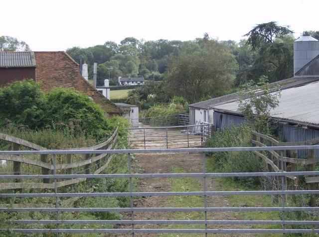 Footpath through Stokerow Farm
