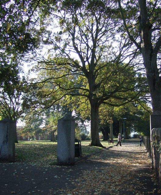 Allhallows Churchyard