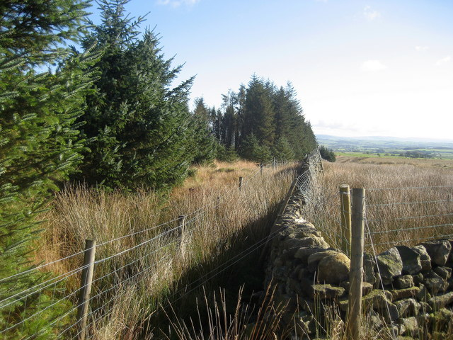 Wall enclosing Part of Gisburn Forest