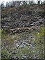 SX5491 : Former railway cutting by Derek Harper