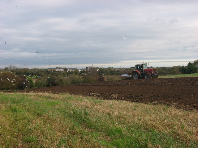 Ploughing at Donacarney, Co. Meath