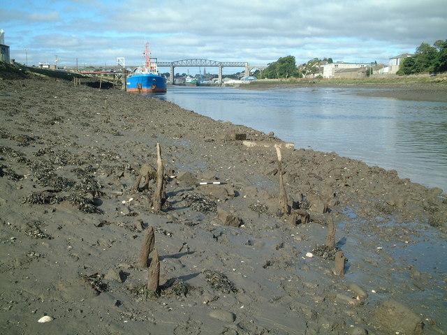 Intertidal zone, River Boyne, Drogheda