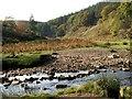 SE1900 : The Little Don River by John Fielding