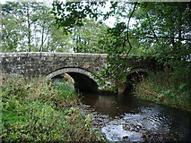 NY4532 : Bridge at Little Blencow by Alexander P Kapp